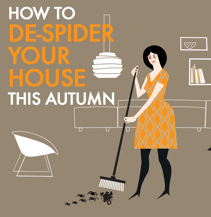 How To De-Spider Your Home This Autumn