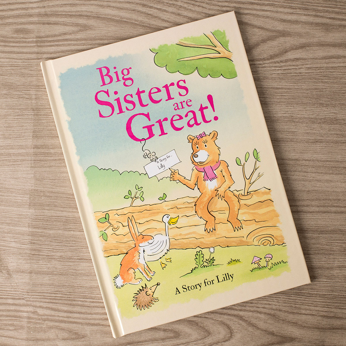 Personalised Book  Big Sisters Are Great