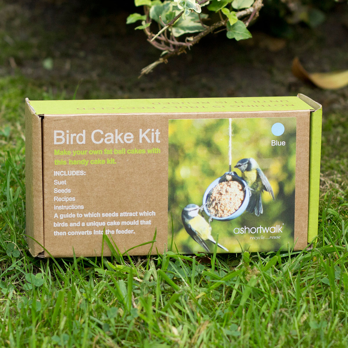 Image of Eco Bird Cake Kit