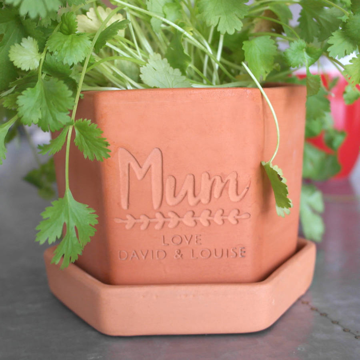 Engraved Square Herb Pot & Tray  For Mum