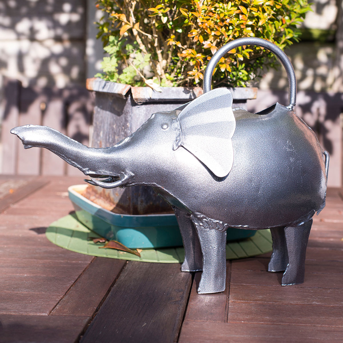 Image of Baby Elephant Watering Can