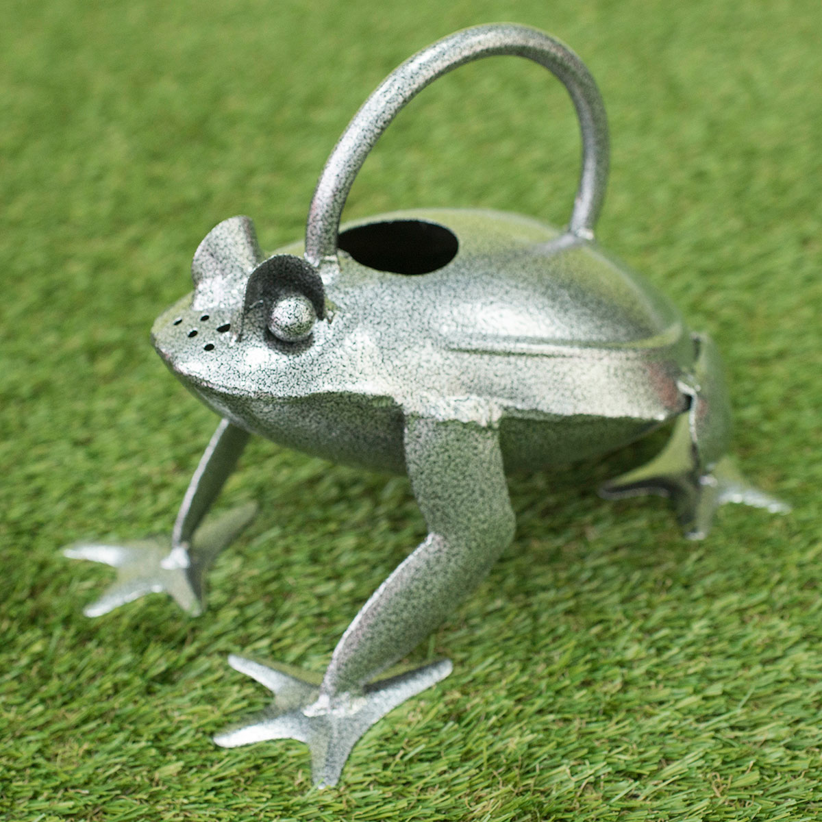 Image of Frog Watering Can